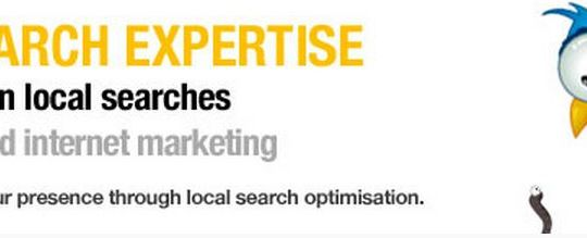 local search & seo services